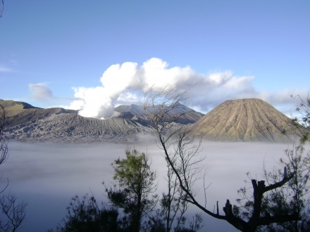price of bromo ijen tour