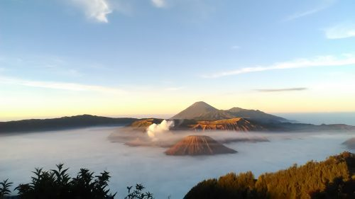 reasonable price for bromo ijen tour